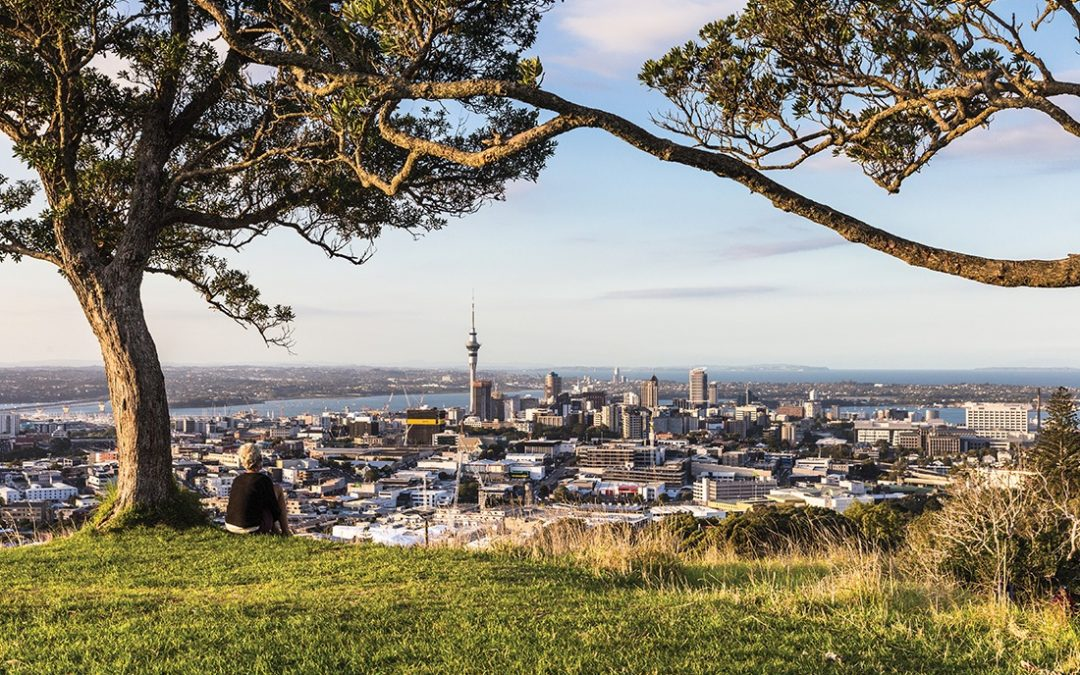 The locals' guide to Auckland