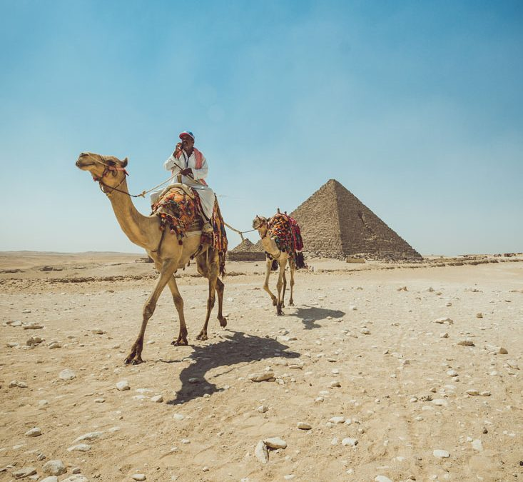 'Free Trip to Egypt': a film that brings Americans to the Middle East