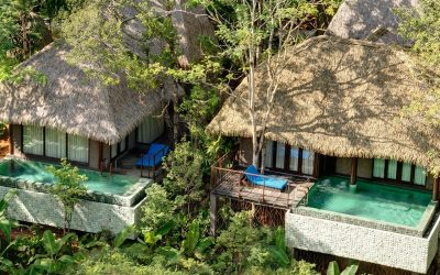 Out of the woods: treehouse hotels around the world that promise to melt away city stress