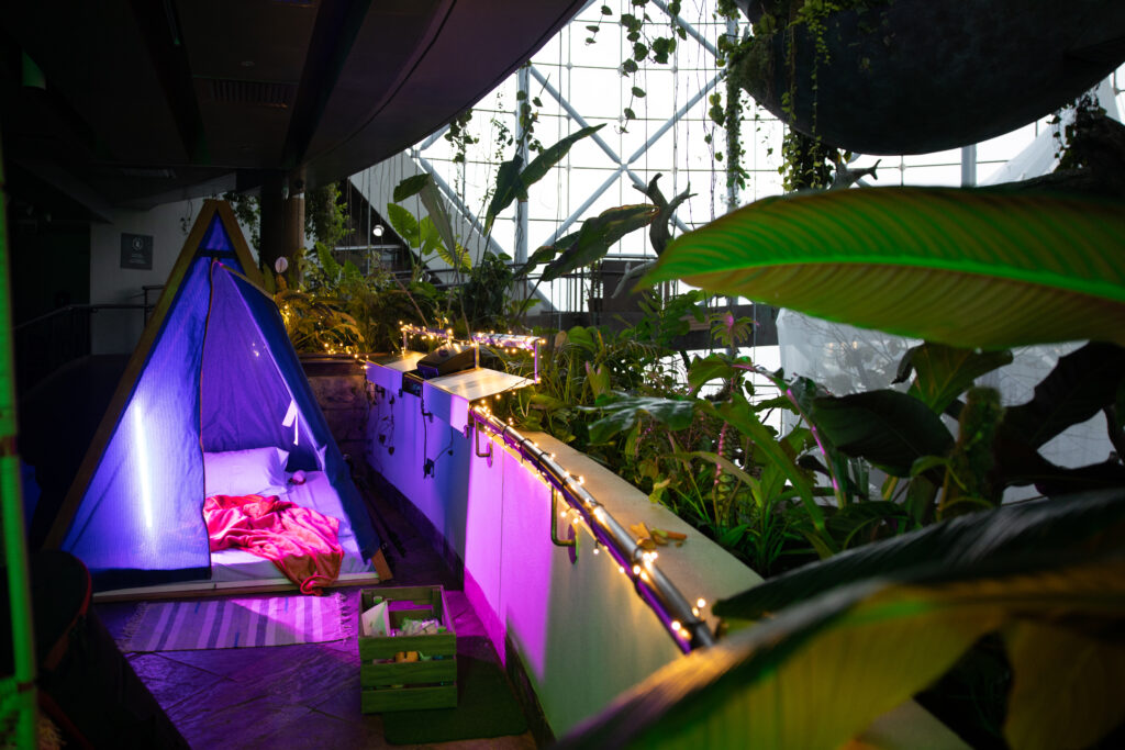 The Green Planet camping tents and fairy lights