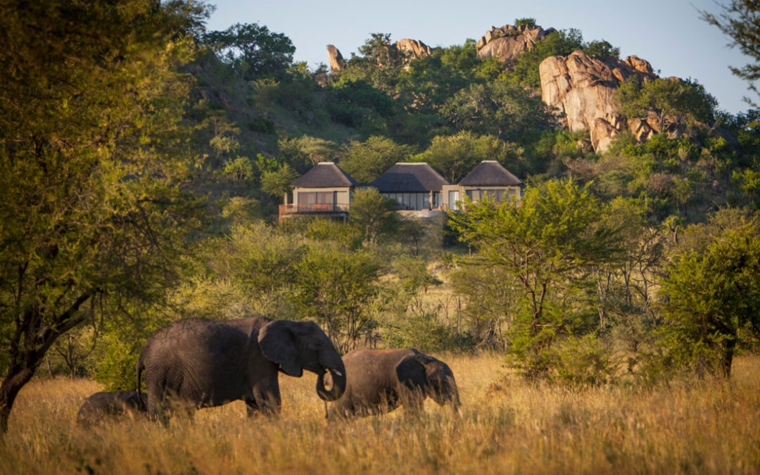 Win 3 nights full board at Four Seasons Safari Lodge Serengeti