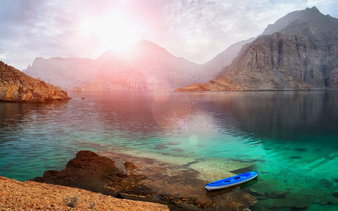 Bucket list destination: Why marine life enthusiasts should add Musandam, Oman to their travel list