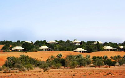 Looking for a luxurious retreat this summer? This is why you should pick Al Maha Desert Resort & Spa
