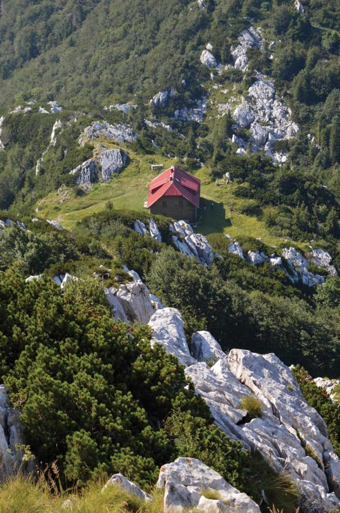 Risnjak National Park in the mountainous region on Croatia is one of eight national parks in the country. Credit | Istock